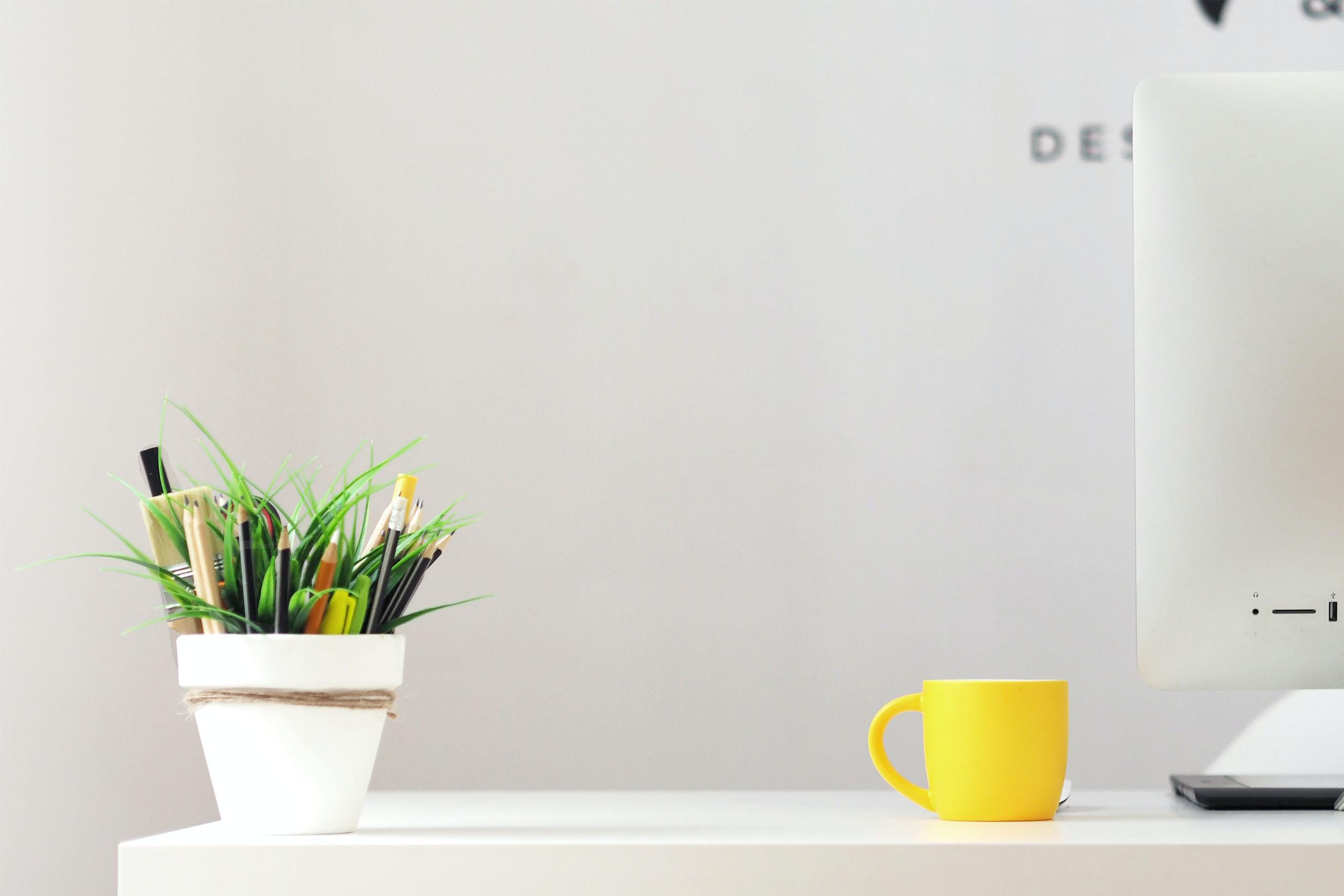 alys-desk-for-training